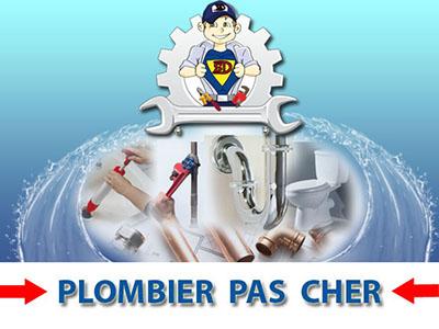 Assainissement des Canalisations Saintry sur Seine 91250